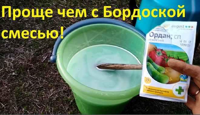 Препарат от вредителей клубники